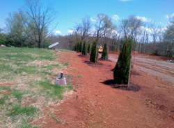 Cedar Lawn Memorial Park, Roanoke, VA - Tree Planting Project