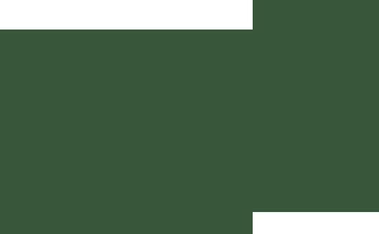 The Fair View Group