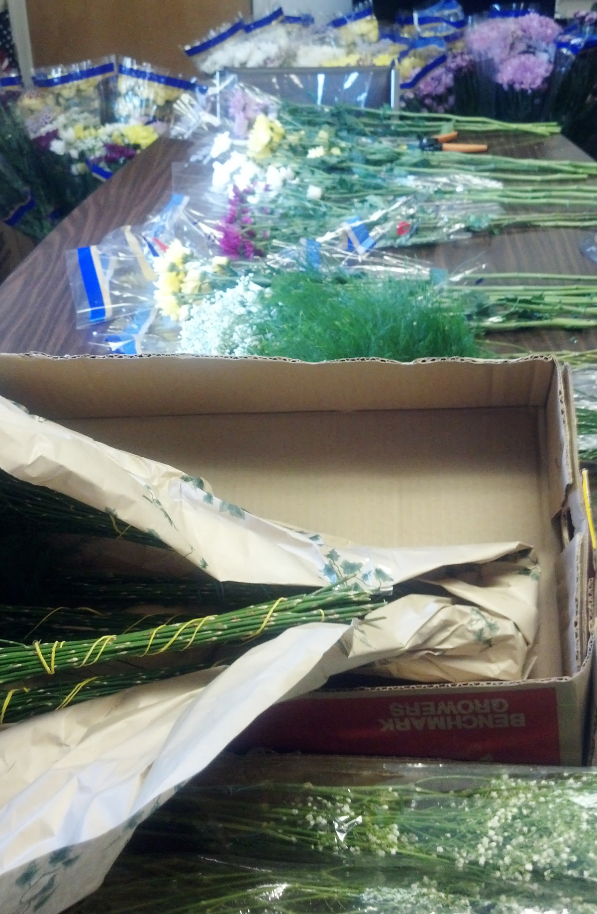 Mother's Day Celebration at Cedar Lawn - Preparing the Bouquets